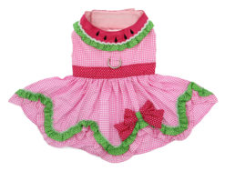 Watermelon Dog Dress back