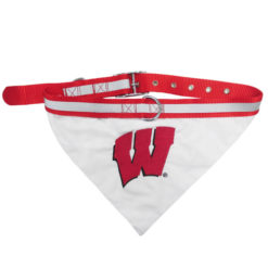 Wisconsin Badgers NCAA Dog Collar and Bandana