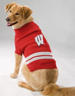 Wisconsin Badgers turtleneck dog sweater on pet