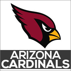 Arizona Cardinals Dog Products