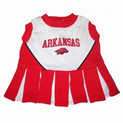 Arkansas Razorbacks dog cheerleader