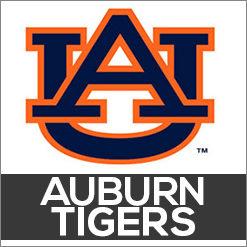 Auburn Tigers Dog Products