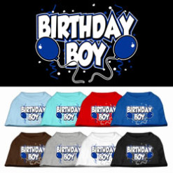 Birthday Boy blue balloons dog screen print t-shirt colors