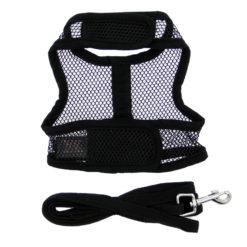 Black Cool Mesh Dog Harness on dog back