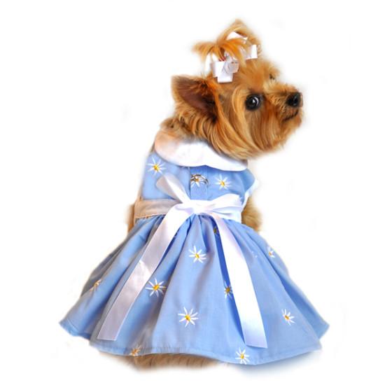 Blue Denim and Daisy Dog Dress