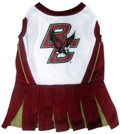 Boston Eagles College dog dress cheerleader