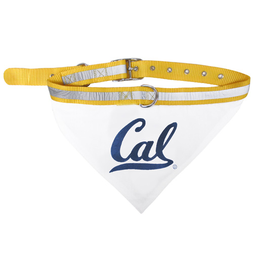 California State Golden Bears adjustable dog collar and bandana