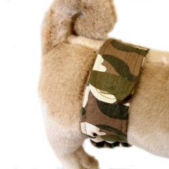 Camouflage Dog Belly Band