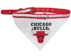 Chicago Bulls Dog Bandana and Collar
