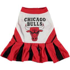 Chicago Bulls NBA Dog Cheerleader Dress