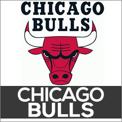 Chicago Bulls Dog Products