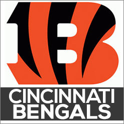 Cincinnati Bengals Dog Products