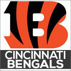Cincinnati Bengals Dog Products