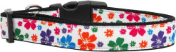 Colorful Hawaiian Hibiscus Adjustable Dog Collar
