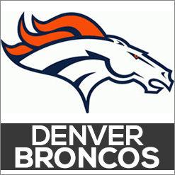 Denver Broncos Dog Products