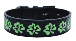 Embroidered Shamrock Dog Collar