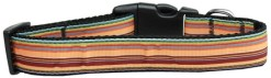 Fall Themed Stripes adjustable dog collar