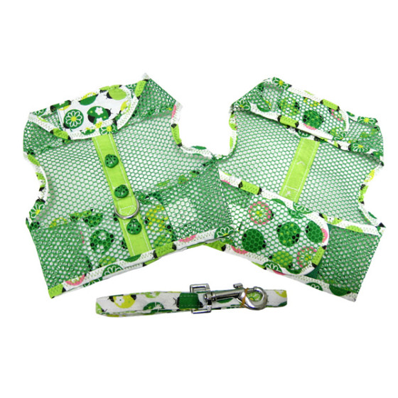 Green Ladybug Cool Mesh Dog Harness and Leash