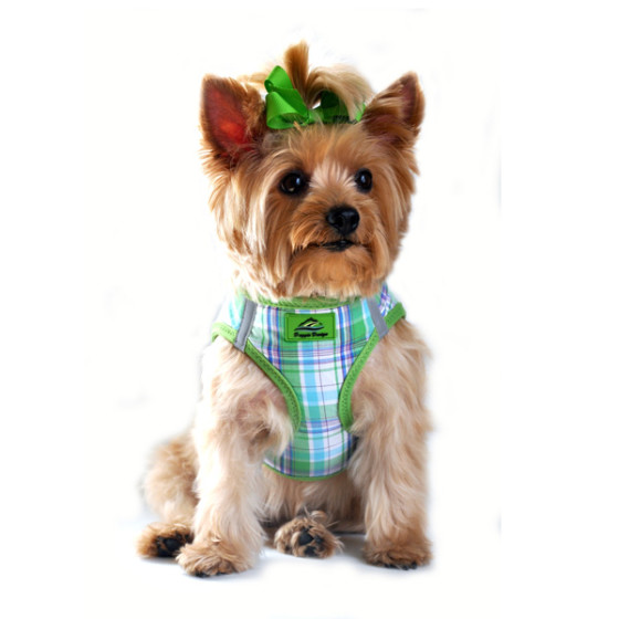 Green and Turquoise Plaid Dog Harness
