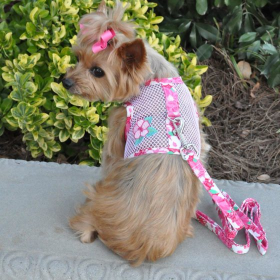Hawaiian Hibiscus Cool Mesh Dog Harness