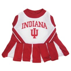 Indiana Hoosiers Cheerleader dog dress
