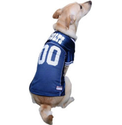 Indianapolis Colts NFL dog jersey on pet