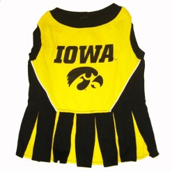 Iowa Hawkeye cheerleader dog dress