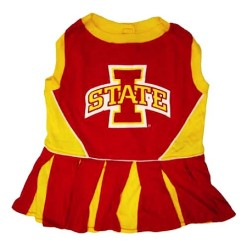 Iowa State Cyclones cheerleader dog dress
