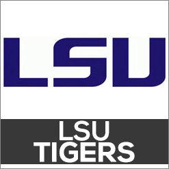 LSU Tigers Dog Products