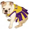 LSU Tigers cheerleader dog dress on pet