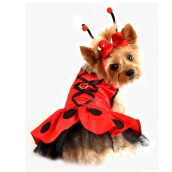 Ladybug Dog Costume with Antennae & Leash