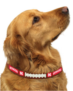 Nebraska Huskers NCAA leather dog collar on pet