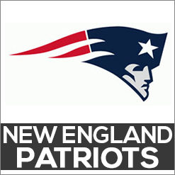 New England Patriots Dog Products