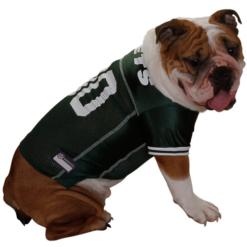 New York Jets NFL dog jersey on pet