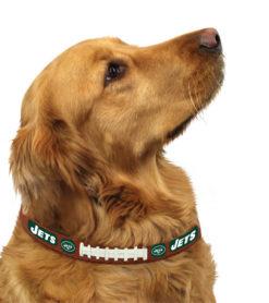New York Jets leather dog collar on pet