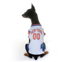 New York Knicks dog jersey on dog