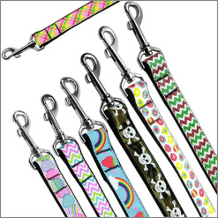 Ribbon Nylon Dog Leashes