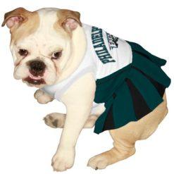 Philadelphia Eagles NFL dog cheerleader dress on pet