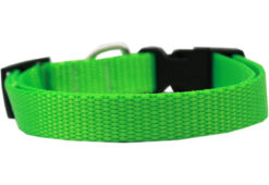 Plain Lime Green Nylon Dog Collar