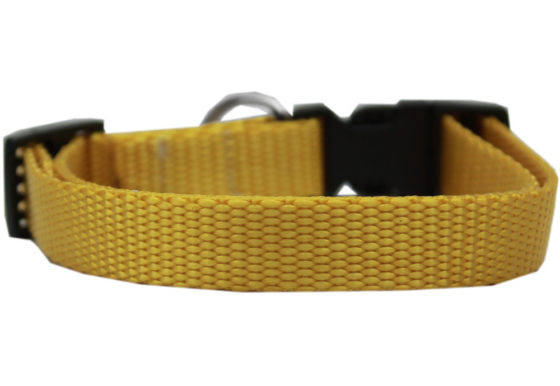 Plain Yellow Nylon Dog Collar