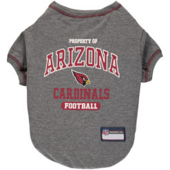 Property of Arizona Cardinals Football front