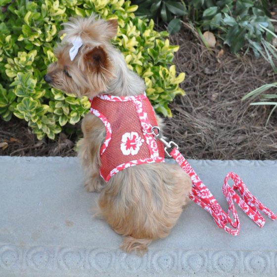 Red Hawaiian Cool Mesh Dog Harness