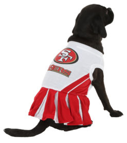 San Francisco 49ers NFL dog cheerleader dress on pet back
