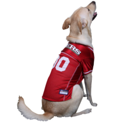 San Francisco 49ers NFL dog jersey on pet