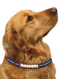 Seattle Sehawks NFL leather dog collar on pet