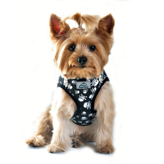Skull and Crossbones Dog Harness