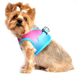 Sugar Plum American River Dog Harness side view