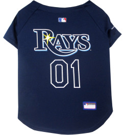 Tampa Bay Rays MLB NFL dog jersey back