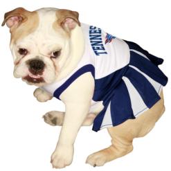 Tennessee Titans dog cheerleader dress on pet