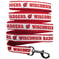 Wisconsin Badgers NCAA Nylon Dog Leash